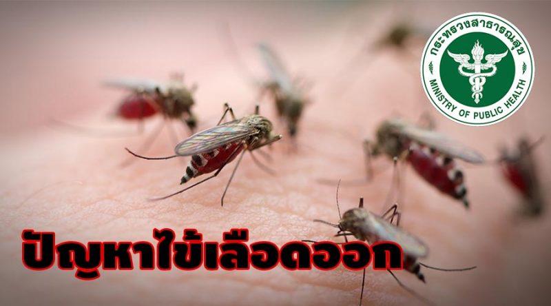 ไข้เลือดออก ปัญหาด้านสาธารณสุขในประเทศไทย
