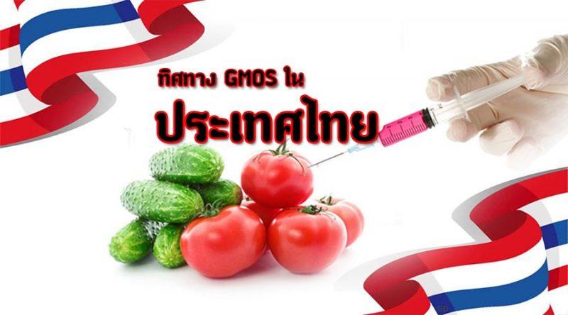 GMOs ทิศทางความปลอดภัยทางอาหารของประเทศไทย