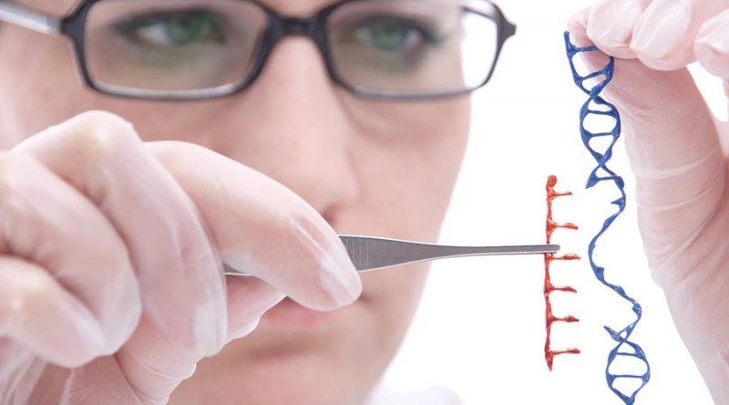 ความรู้เกี่ยวกับ พันธุวิศวกรรม (Genetic Engineering)