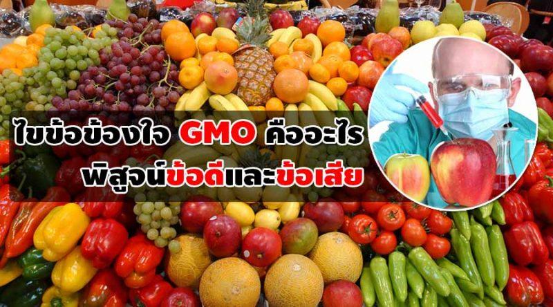ไขข้อข้องใจ GMO คืออะไร มีข้อดีและข้อเสียอย่างไร